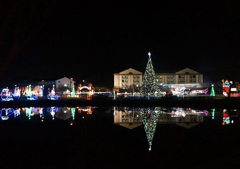 Winterfest of Lights Package and Festivities
